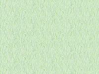 Шпалери 1,06х10,05 вінілові на флізеліновій основі Ніл 1225-04 світло-салатовий