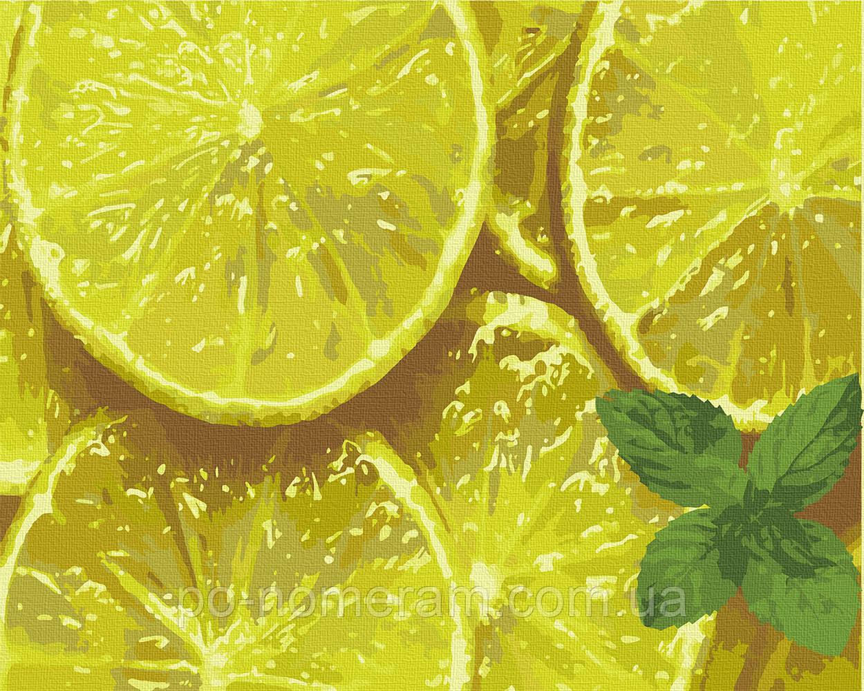 Картина по номерам ArtCraft Мятный цитрус (12014-AC) 40 х 50 см (Без коробки)