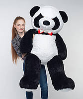 Плюшевый мишка Мистер Панда 165 см большая мягкая игрушка на подарок в день рождения