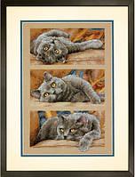 Набор для вышивания Dimensions Max the Cat Cross Stitch Kit