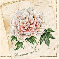 "Салфетки для декупажа ""Paconiaceae"" (Пион) 33*33 см №22"
