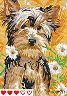 Картина за номерами Маленький друг, кольорове полотно, 40*50 см, без коробки