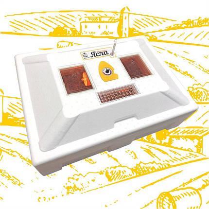 Брудер Теплуша ( Ясла ) для курчат, бройлерів, перепілок місткість до 100 голів, фото 2