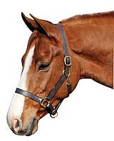 Недоуздок кожаный для лошади, пони, осла