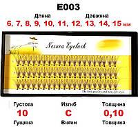 ОПТ от 3 ед. Nesura Eyelash 10D, 6-15 мм, изгиб C, 0,10, 60 пучков Несура накладные ресницы пучки