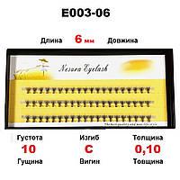 Ресницы Nesura Eyelash 10D, 6 мм, изгиб C, 0,10, 60 пучков Несура пучковые ресницы, реснички