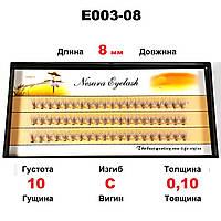 Ресницы Nesura Eyelash 10D, 8 мм, изгиб C, 0,10, 60 пучков Несура ресницы пучковые