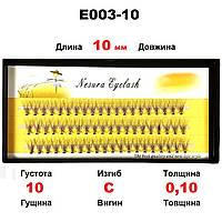 Ресницы Nesura Eyelash 10D, 10 мм, изгиб C, 0,10, 60 пучков Несура пучки ресниц
