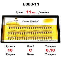Ресницы Nesura Eyelash 10D, 11 мм, изгиб C, 0,10, 60 пучков Несура пучки безузелковые