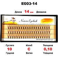 Ресницы Nesura Eyelash 10D, 14 мм, изгиб C, 0,10, 60 пучков Несура безузелковые ресницы