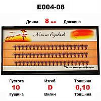 Ресницы Nesura Eyelash 10D, 8 мм, изгиб D, 0,10, 60 пучков Несура пучковые ресницы