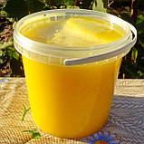 Мед разнотравье + подсолнечниковый урожая 2020 года, фото 4