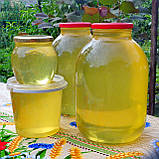 Мед разнотравье + подсолнечниковый урожая 2020 года, фото 7