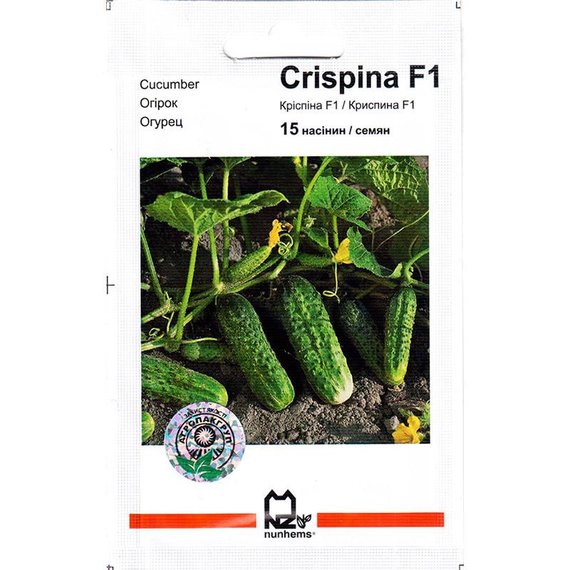 """Насіння огірка ультрараннего, самоопыляемого """"Кріспіна F1 (15 насінин) від Nunhems, Голандія"""