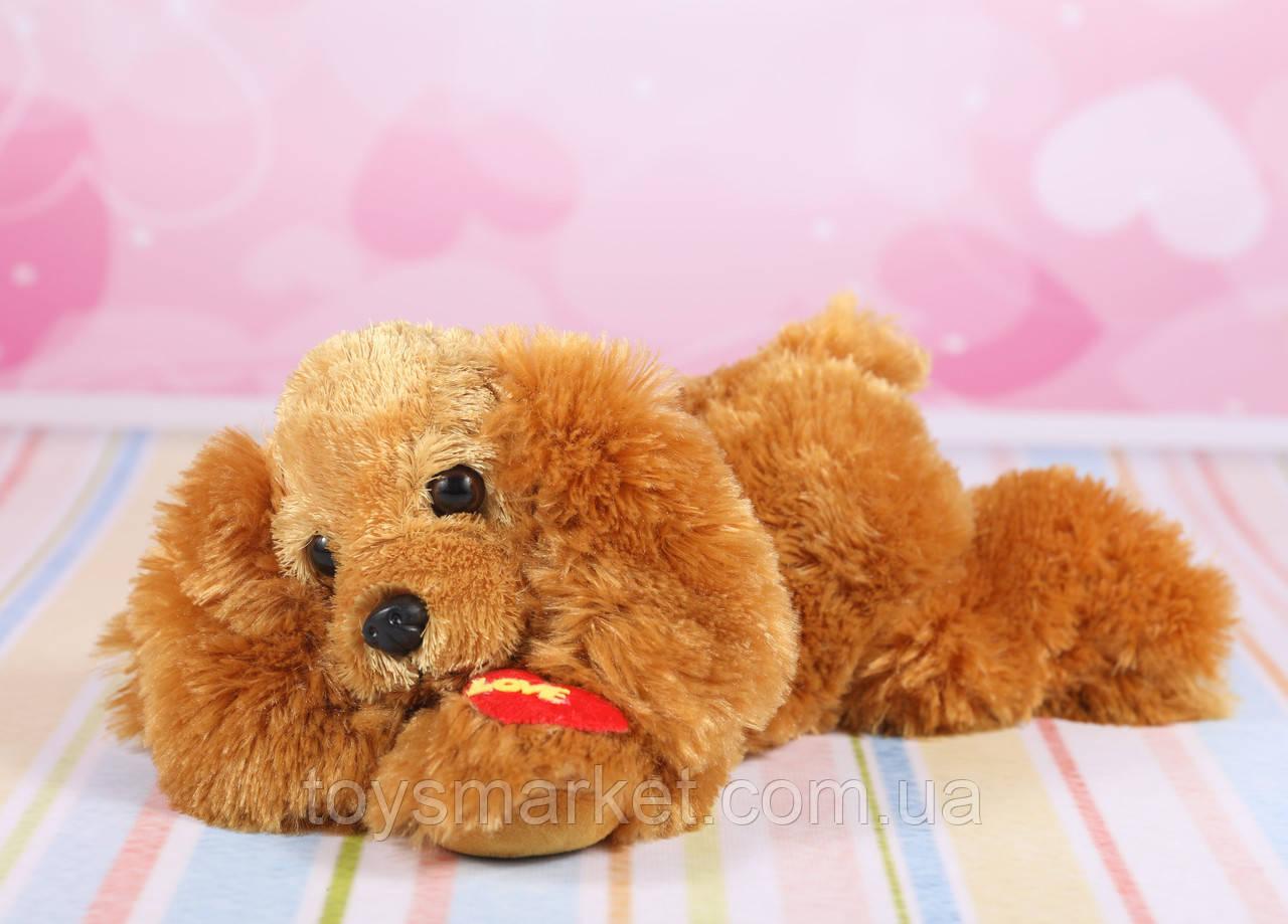 Мягкая игрушка собачка, плюшевая собака, 23 см.