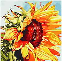 "Набір для тв. картини по номерах Art Story AS0811 ""Соняшник"" 40*40см"
