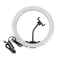Кільцева світлодіодна LED лампа 20 см з Тримачем телефону 3 Режими Регулювання Яскравості, фото 1