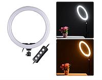 Кільцева світлодіодна LED лампа 16 см 3 Режими Регулювання Яскравості, фото 1