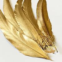 Перо петуха Gold длинна 30-35см, ширина 2,5см, 1шт (двусторонняя прокраска)