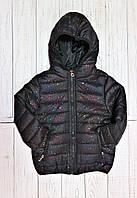 Утеплені куртки для дівчаток Glo-Story, Угорщина, фото 1