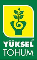 171-59 F1 1000 шт Yuksel Seeds Кавун Насіння (Кавун Насіння)