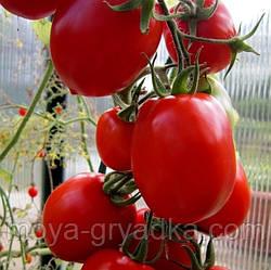 """Насіння томатів Ріо Фуєго 0,1г ТМ""""Яскрава"""""""