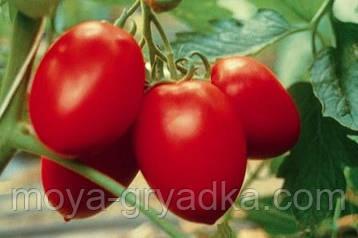 """Насіння томатів Сливка гігант 0,1г ТМ""""Яскрава"""""""