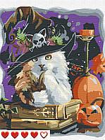 Картина по номерам Котик, цветной холст, 40*50 см, без коробки Barvi