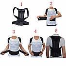 Коректор постави Back Pain Need Help медичний бандаж фіксатор пояс для спини випрямляч хребет Relief S, фото 7