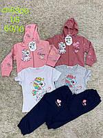 Трикотажный спортивный костюм для девочек оптом, S&D, 1-5 рр