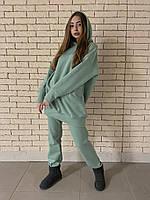 Жіночий теплий зимовий костюм на флісі 42\44, фісташка
