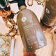 Шампунь проти випадіння волосся Luseta Jamaican Black Castor Oil Shampoo 500 ml, фото 2