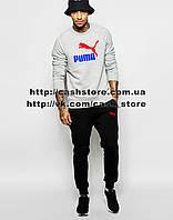 Мужской спортивный костюм Puma