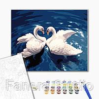 Лебединый танец 40х50 см картина по номерам, фото 2