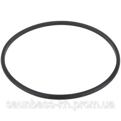 Уплотнительное кольцо крышки префильтра насоса Aquaviva SMP