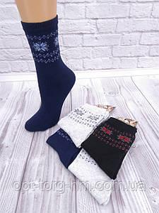 Жіночі шкарпетки КВМ