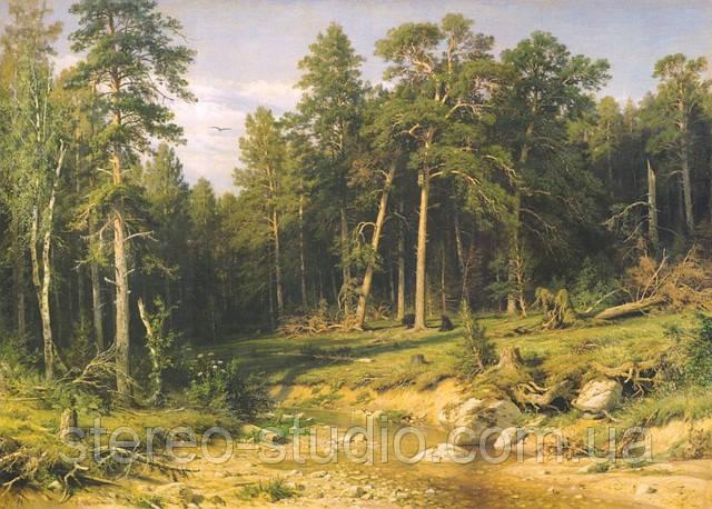 Репродукции картин Шишкина