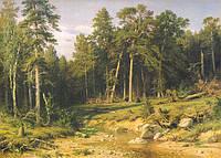 Репродукции картин Шишкина, фото 1