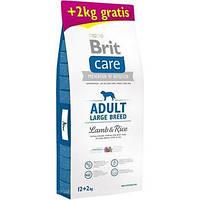 Сухой корм Brit Care Adult Large Breed Lamb & Rice 12 кг + 2 кг бесплатно (для взрослых собак крупных пород)