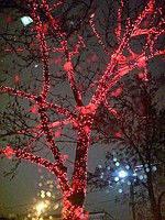 Гирлянда уличная Лучи 5х20 м, декор деревьев, фасадов