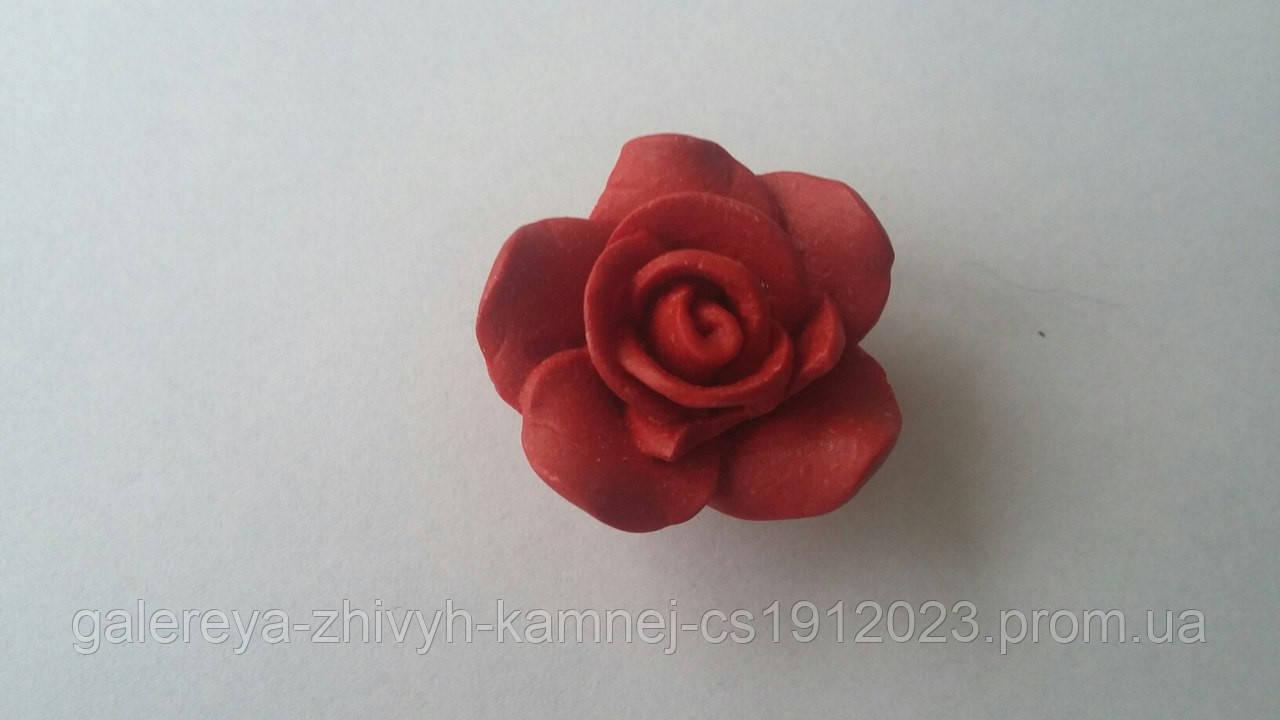 Роза из зубчатого коралла