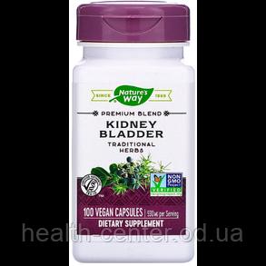 Kidney Bladder 100 капс лечение воспаления почек и мочевого пузыря, мочегонное Nature's Way USA