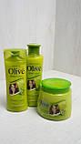 Habetong Шампунь для пошкодженого волосся Олива 400мл 26072-42, фото 3
