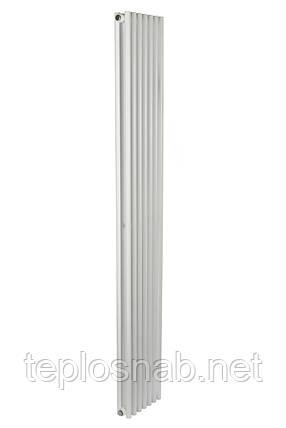 Дизайн радіатори Praktikum 2, H-1800 mm, L-273mm, фото 2