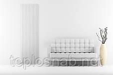 Вертикальный радиатор Praktikum 1, H-2000 мм, L-501 мм, фото 3