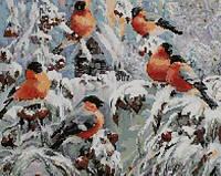 Набор в алмазной технике Зимние птицы СК 609609