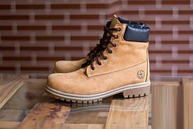 Зимове взуття Shamrock - Yellow Hi-Top (Зимние кеды\ботинки\обувь\тимберленд)