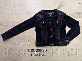 Джинсові куртки для дівчаток Seagull 134-164 p.p.