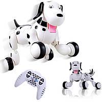 Игрушка интерактивная собака робот на пульте управления Smart Dog Умный питомец говорящий пес Happy Cow Белый, фото 1