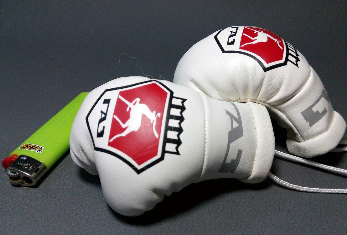 Підвіска боксерські рукавички Авто подарунок Подарунок автолюбителю Підвіска в авто Підвіска в машину ГАЗ